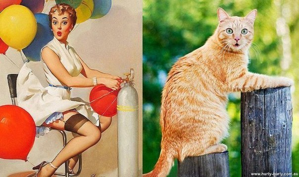 cats-as-pin-up-girls-10