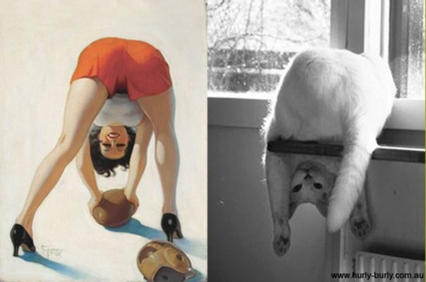 cats-as-pin-up-girls-4