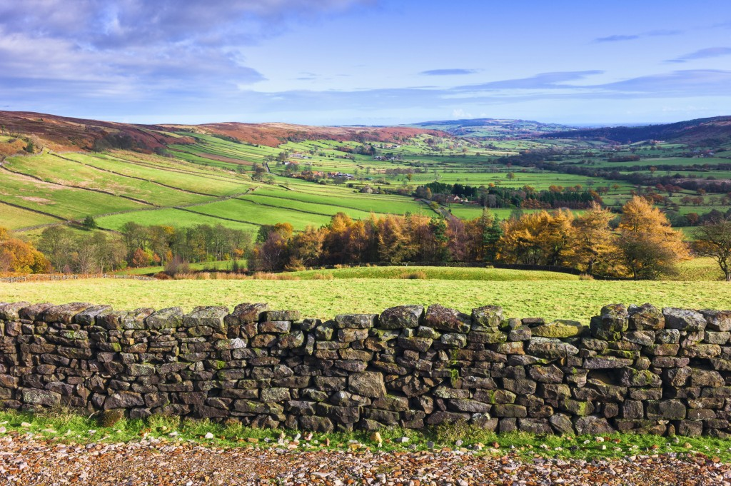 North York Moors in autumn, Yorkshire, UK.