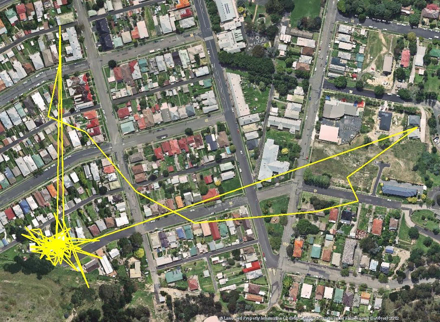 gps-tracker-cat-movement-map-lithgow-central-tablelands-local-land-services-5